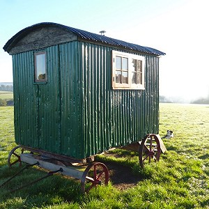 Delivery Shepherds Hut