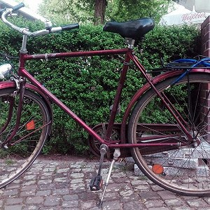 Delivery 1 bicycle