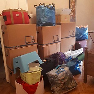 Delivery Small move with around 20 boxes, a flat screen tv, and small appliances (professionally packed)