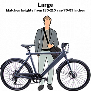 Delivery 1 bicycle (eBike)